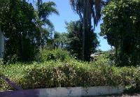 Terreno à venda bem localizado, José Amândio